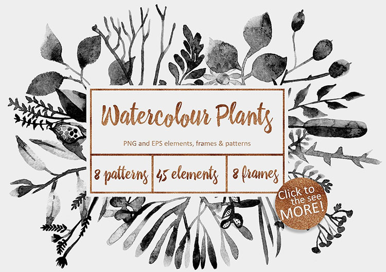 Watercolor Floral Set - Watercolour Plants